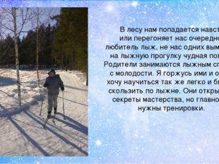 В лесу нам попадается навстречу или перегоняет нас очередной любитель лыж, не
