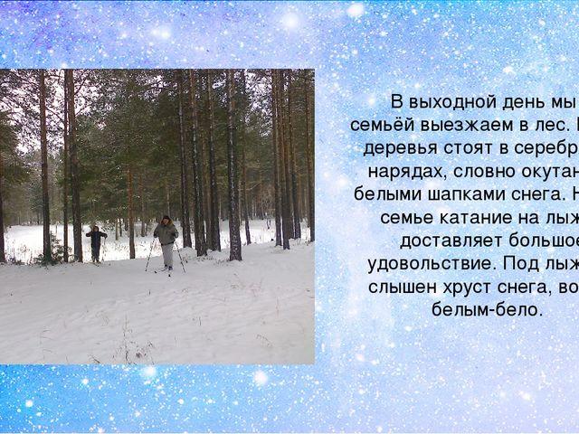 В выходной день мы всей семьёй выезжаем в лес. В лесу деревья стоят в серебря...