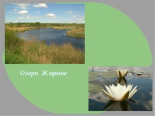 Озеро Жирное