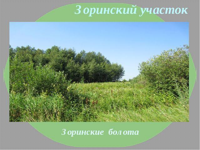 Зоринский участок Зоринские болота