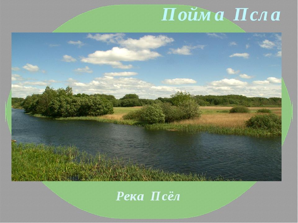Пойма Псла Река Псёл