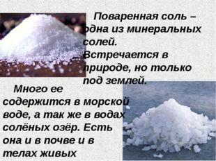 Поваренная соль – одна из минеральных солей. Встречается в природе, но тольк