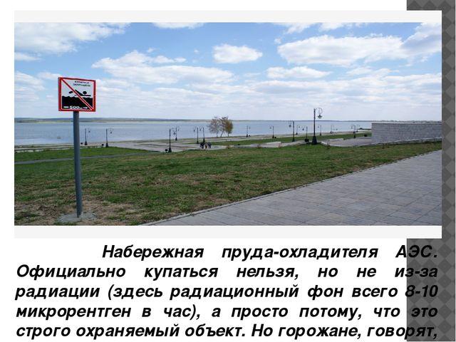 Набережная пруда-охладителя АЭС. Официально купаться нельзя, но не из-за рад...