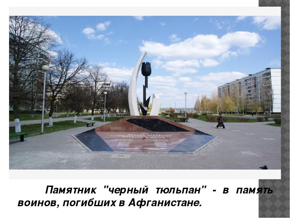 """Памятник """"черный тюльпан"""" - в память воинов, погибших в Афганистане."""