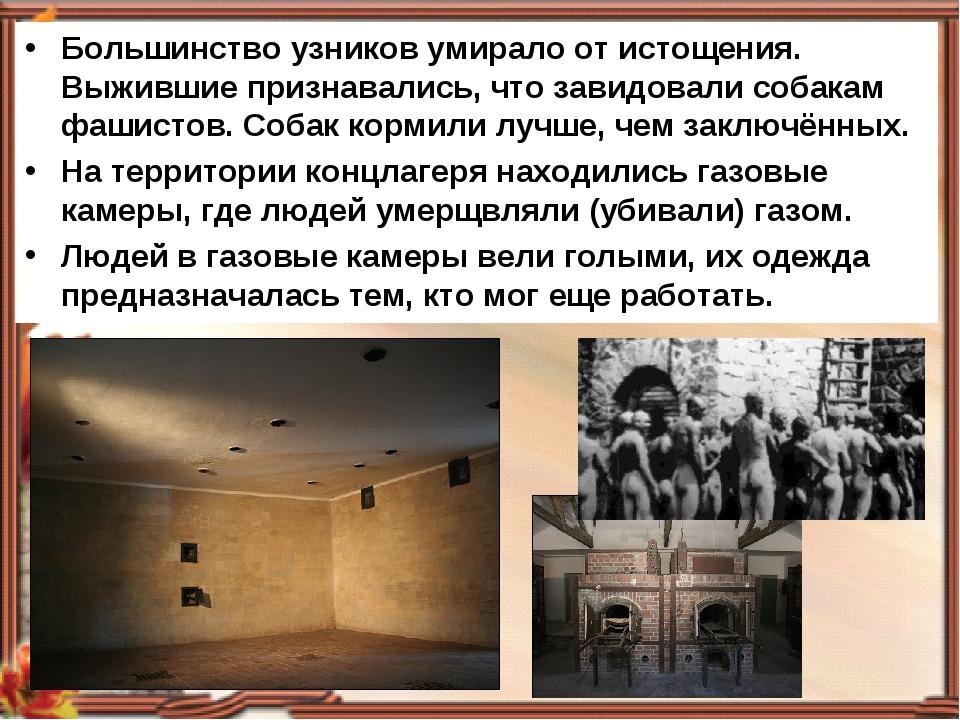 Большинство узников умирало от истощения. Выжившие признавались, что завидова...