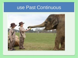 use Past Continuous