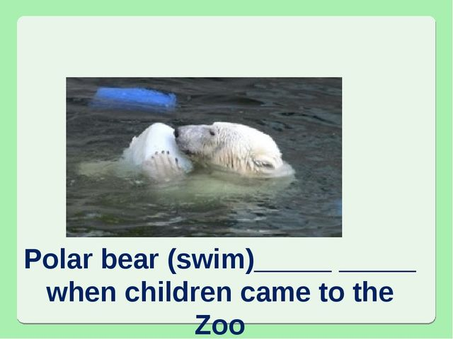 Polar bear (swim)_____ _____ when children came to the Zoo