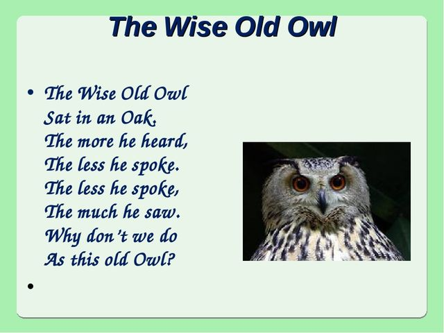 The Wise Old Owl The Wise Old Owl Sat in an Oak. The more he heard, The less...