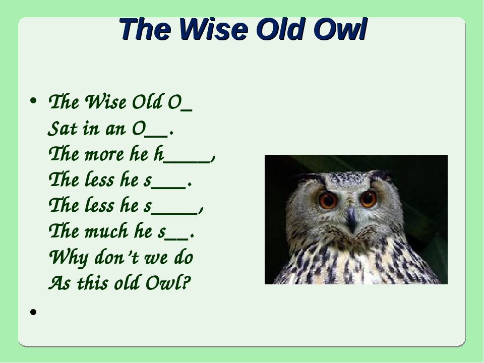 The Wise Old Owl The Wise Old O_ Sat in an O__. The more he h____, The less h...