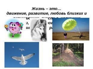 Жизнь – это… движение, развитие, любовь близких и окружающих, счастье, источн