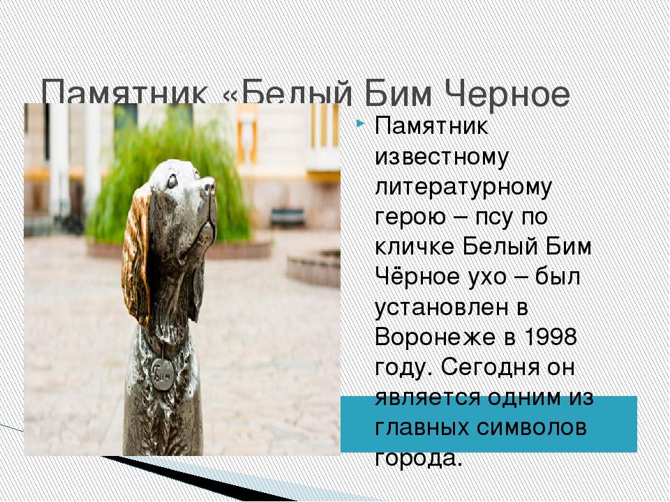 Памятник «Белый Бим Черное Ухо» Памятник известному литературному герою – пс...