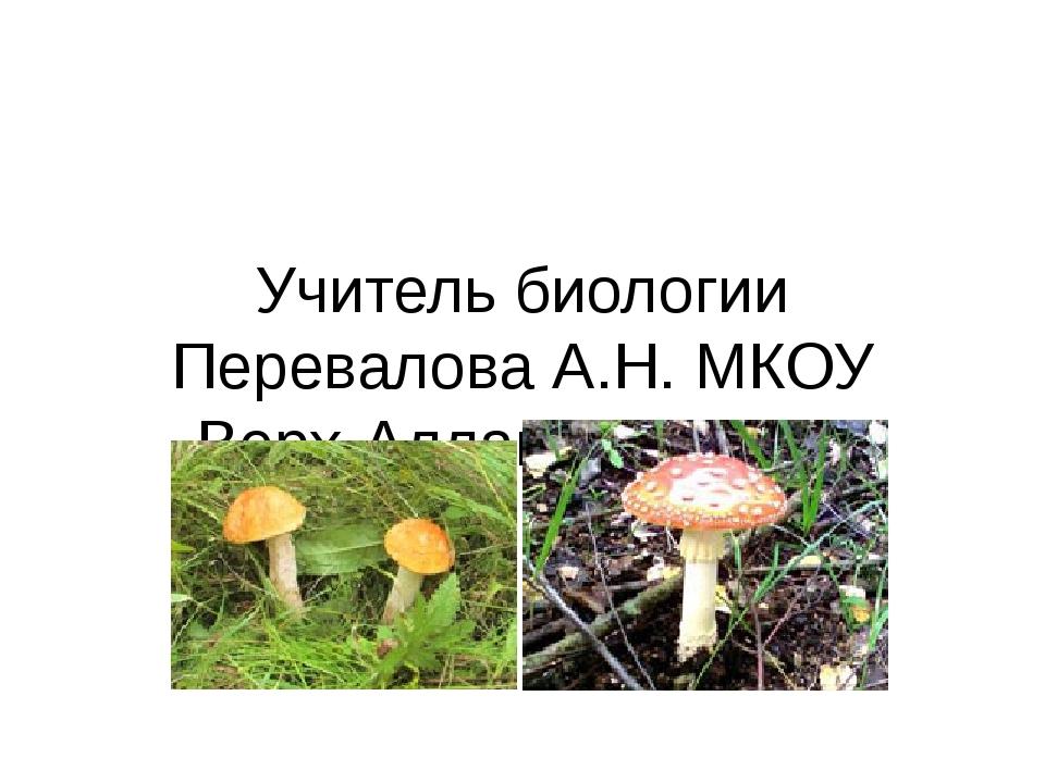 Учитель биологии Перевалова А.Н. МКОУ Верх-Аллакская сош»