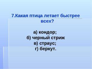Какая птица летает быстрее всех? а) кондор; б) черный стриж в) страус; г) бер