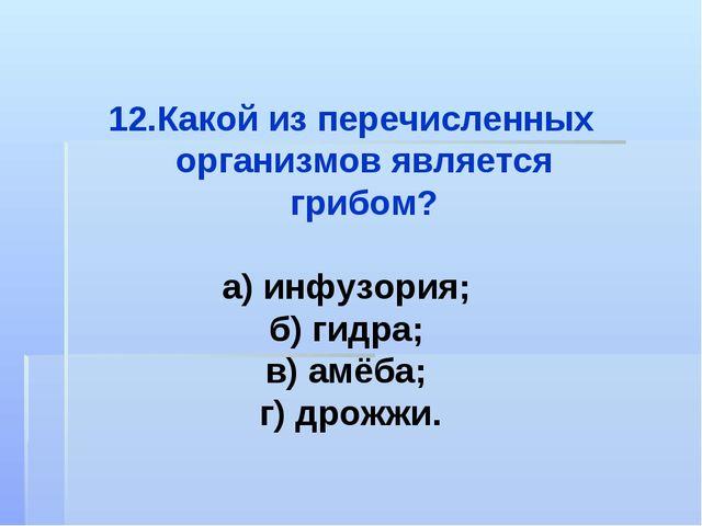 Какой из перечисленных организмов является грибом? а) инфузория; б) гидра; в)...