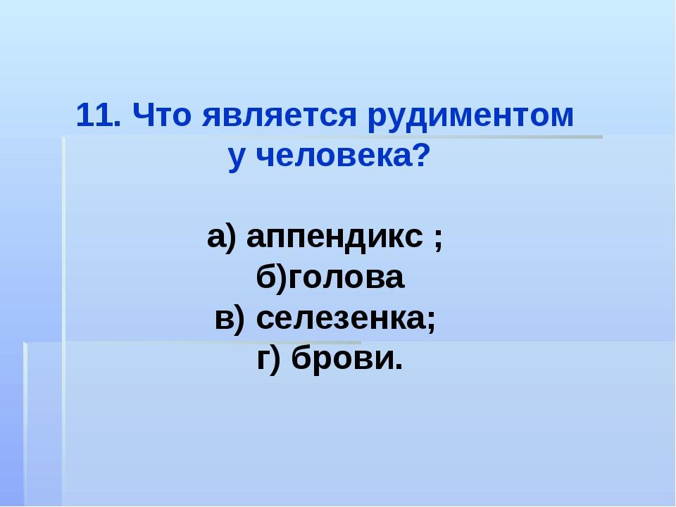 Что является рудиментом у человека? а) аппендикс ; б)голова в) селезенка; г)...