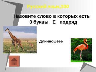 Русский язык,300 Назовите слово в которых есть 3 буквы Е подряд Длинношеее