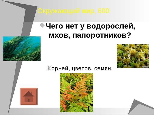 Окружающий мир, 600 Чего нет у водорослей, мхов, папоротников? Корней, цветов...