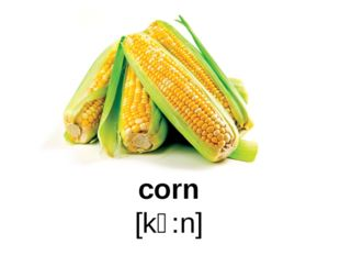 corn [kɔ:n]