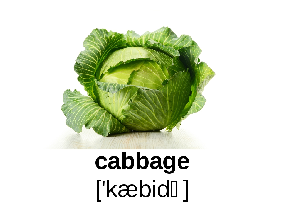 cabbage ['kæbidʒ]