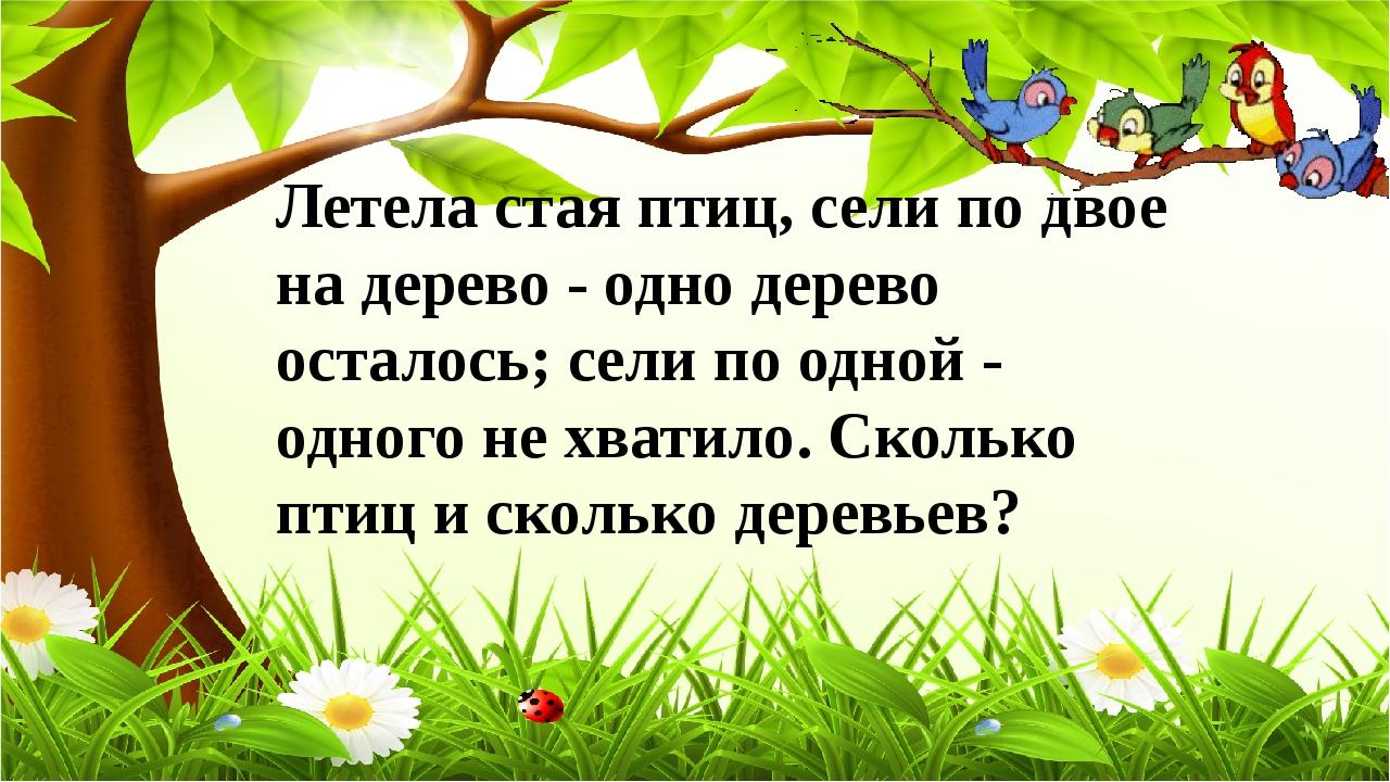 Летела стая птиц, сели по двое на дерево - одно дерево осталось; сели по одно...