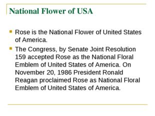 National Flower of USA Rose is the National Flower of United States of Americ
