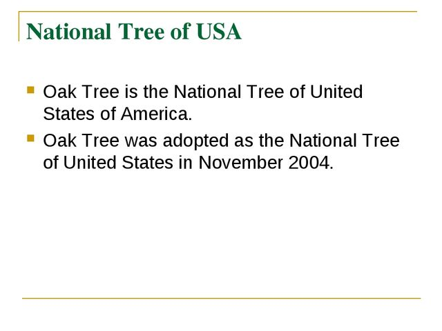 National Tree of USA Oak Tree is the National Tree of United States of Americ...