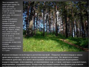 Леса составляют 36% территории страны. На душу населения приходится 0,7 га п