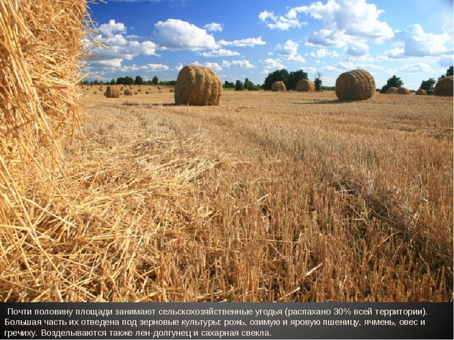 Почти половину площади занимают сельскохозяйственные угодья (распахано 30% в...