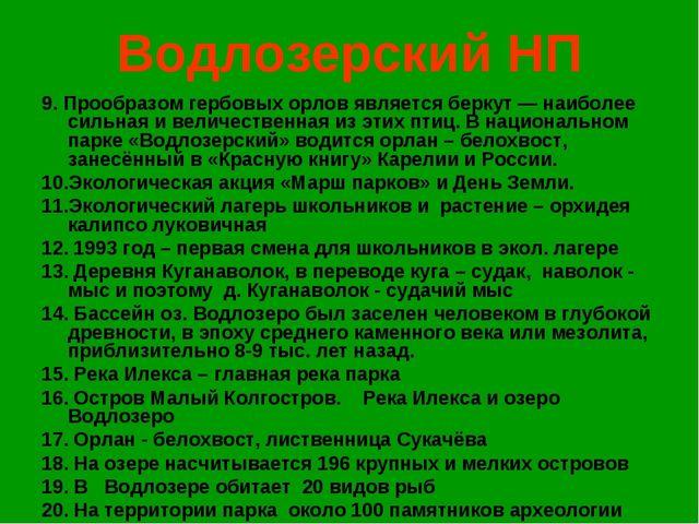 Водлозерский НП 9. Прообразом гербовых орлов является беркут — наиболее сильн...
