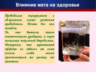 Проводился эксперимент с облучением семян растения арабидопсис. Почти все они