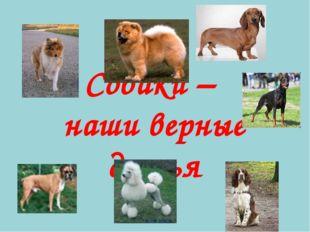 Собаки – наши верные друзья