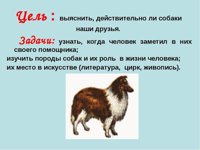 Цель : выяснить, действительно ли собаки наши друзья. Задачи: узнать, когда ч...