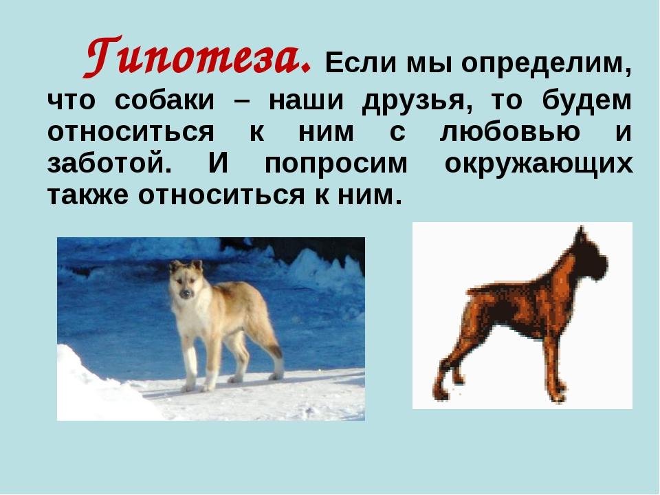 Гипотеза. Если мы определим, что собаки – наши друзья, то будем относиться к...