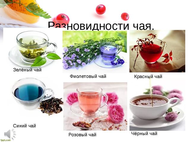 Разновидности чая. Зелёный чай Фиолетовый чай Красный чай Синий чай Розовый ч...