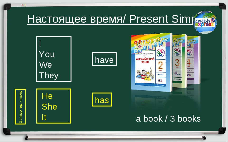 Настоящее время/ Present Simple I You We They He She It have has a book / 3...