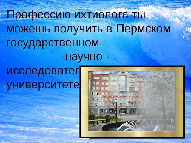 Профессию ихтиолога ты можешь получить в Пермском государственном научно - ис...