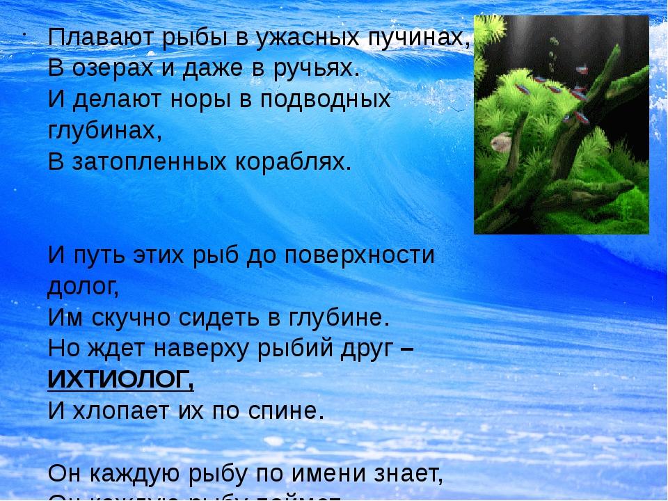 Плавают рыбы в ужасных пучинах, В озерах и даже в ручьях. И делают норы в под...