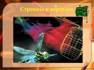Стрекоза и вертолет. Ekaterina050466