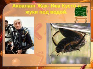 Акваланг Жак- Ива Кусто и жуки под водой. Ekaterina050466