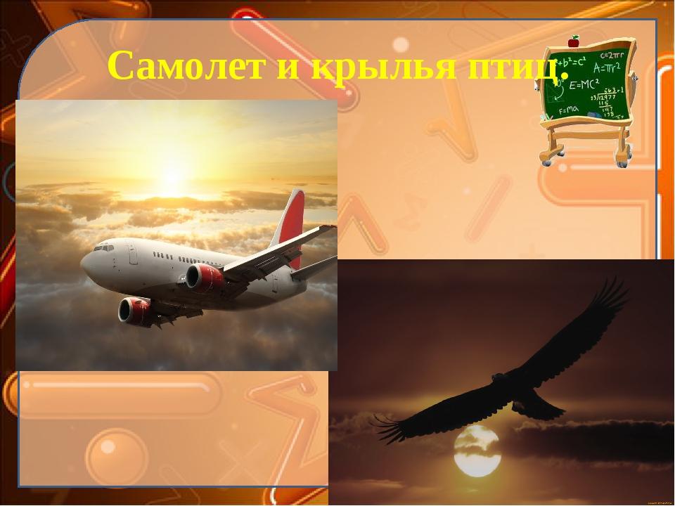 Самолет и крылья птиц. Ekaterina050466