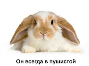Загадка № 15 В сарае, в клетке он живёт, Морковку сладкую грызёт. Ох и острые