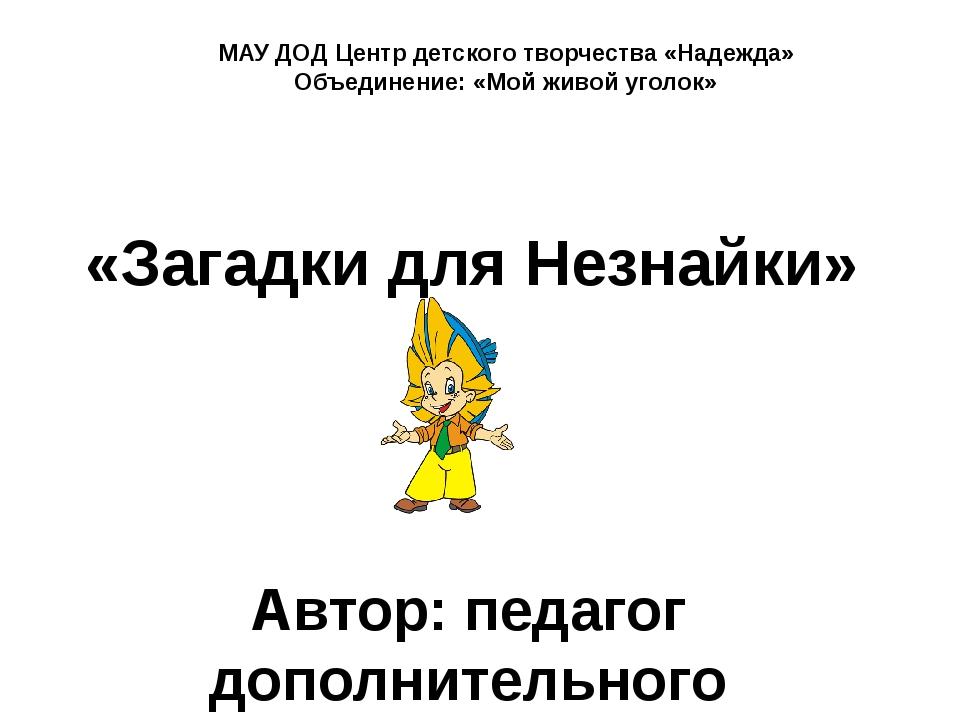 «Загадки для Незнайки» Автор: педагог дополнительного образования Заярнова О....