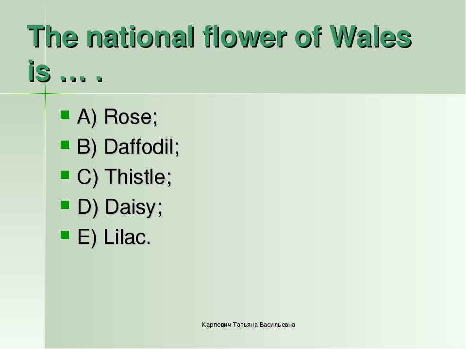 The national flower of Wales is … . A) Rose; B) Daffodil; C) Thistle; D) Dais...