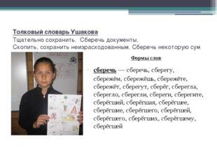 Толковый словарь Ушакова Тщательносохранить.Сберечьдокументы. Скопить,со