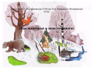 филиал МАОУ «Аромашевская СОШ им. В.Д. Кармацого» Малиновская ООШ «Как животн