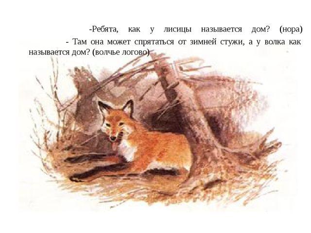 -Ребята, как у лисицы называется дом? (нора) - Там она может спрятаться от з...