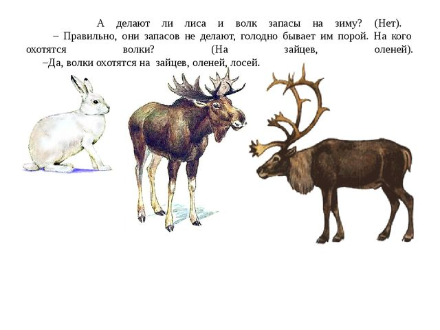 А делают ли лиса и волк запасы на зиму? (Нет). – Правильно, они запасов не д...