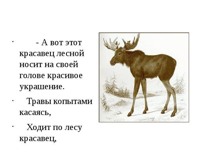 - А вот этот красавец лесной носит на своей голове красивое украшение.  Тр...