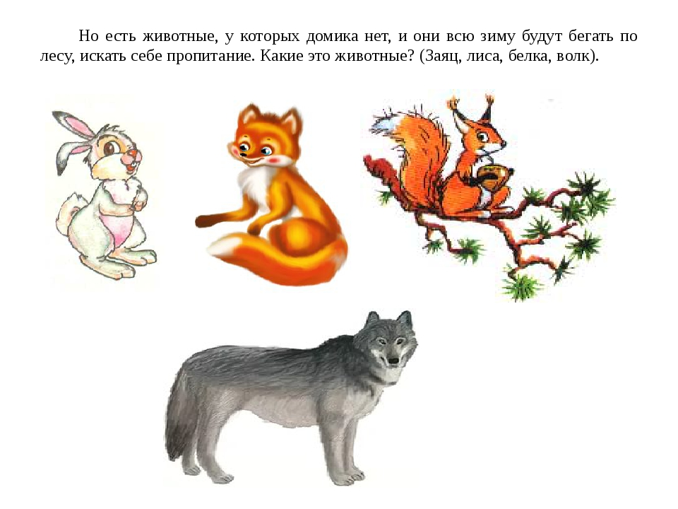 Но есть животные, у которых домика нет, и они всю зиму будут бегать по лесу,...