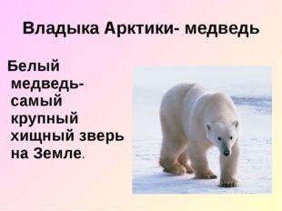 Владыка Арктики- медведь Белый медведь- самый крупный хищный зверь на Земле.